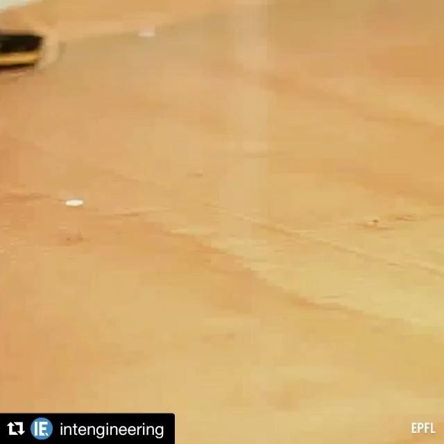 Robô anfíbio. ///// Amphibian robot. Repost @intengineering